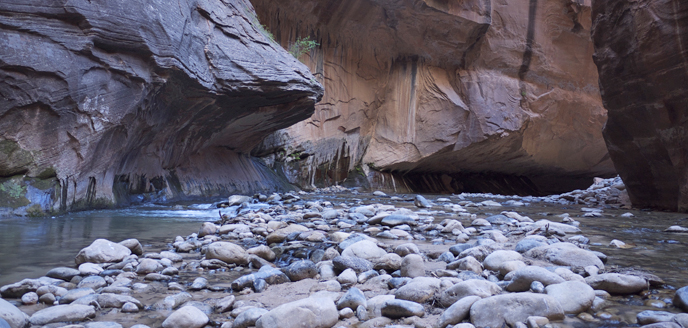 The Virgin River in The Narrows.