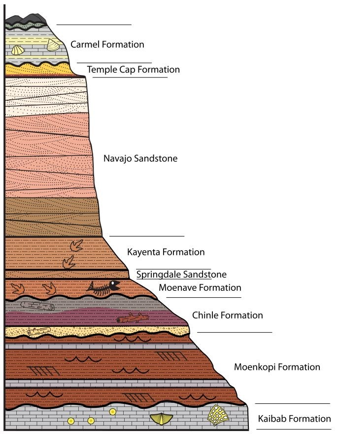 graphic of stratigraphic column showing Zion's sedimentary layers