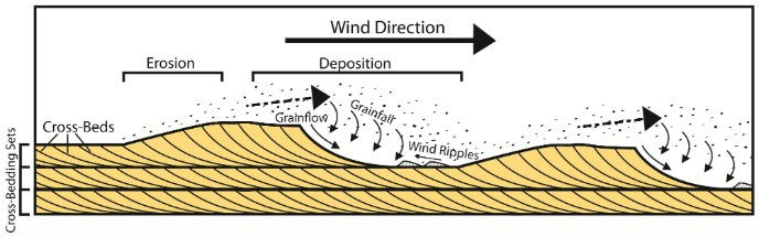 diagram showing how wind-blown sand produces cross-bedding pattern