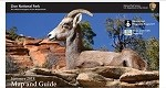 icon cover of newspaper with a bighorn sheep