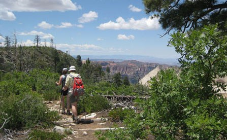 Hikers on the West Rim Trail.