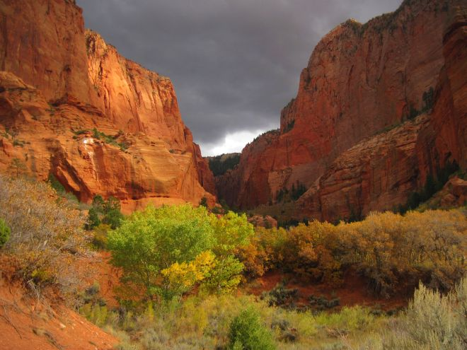 Storm in Kolob Canyons