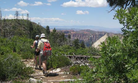 Hikers on the West Rim Trail