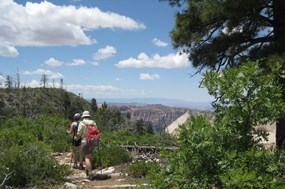 The West Rim Trail.